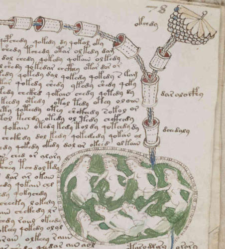 A page from the Voynich Manuscript