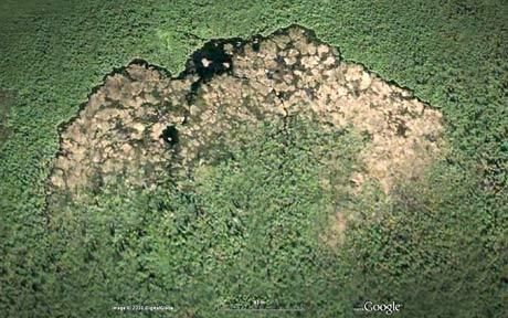 The largest structures built by animals: A beaver dam