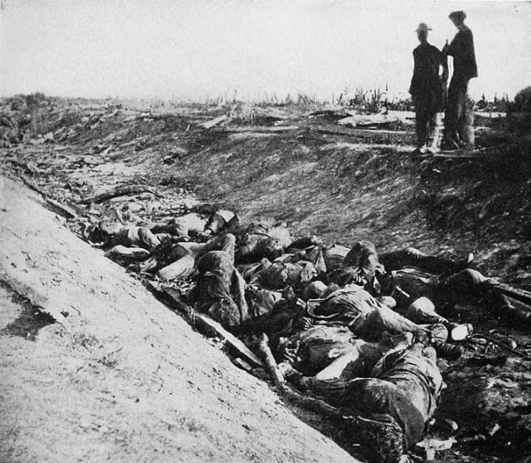 A picture of dead soldiers on the Bloody Lane-Sunken Road.  The Battle of Antietam Facts