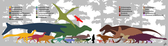 Size comparison of Triceratops
