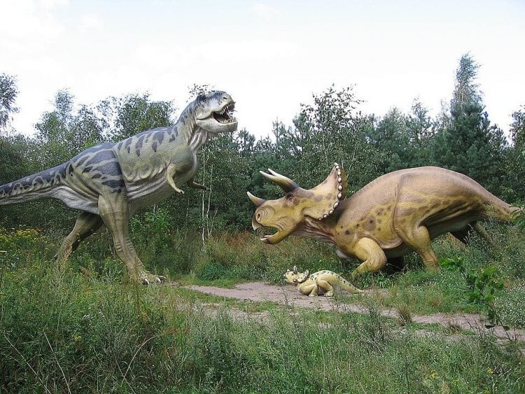 Facts about Triceratops