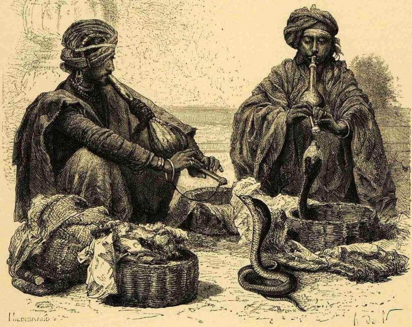 What is snake charming?